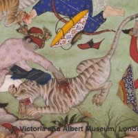 Pic. 13. The use of a jamdhar against a tiger. Victoria and Albert museum, London (c)